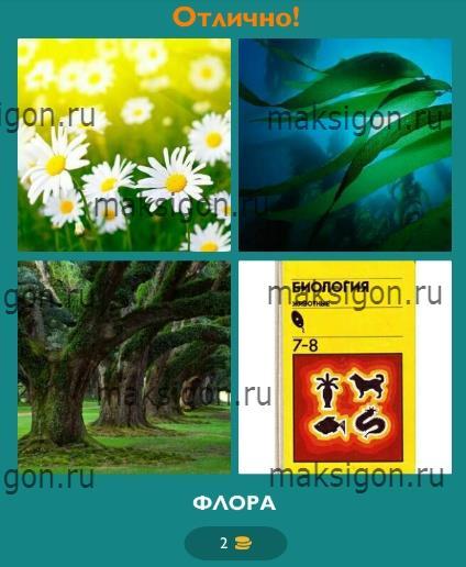 4 картинки 1 слово юла казино | 516x424