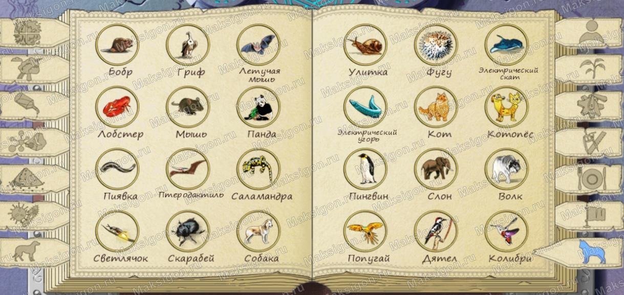 Алхимия на бумаге животные ответы с картинками
