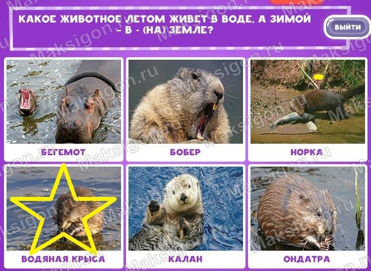 Ответы в игре uniwordsity в одноклассниках все уровни животные
